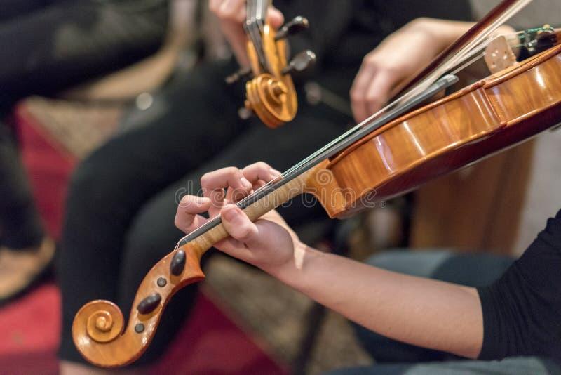 Mão nas cordas de um violino foto de stock royalty free