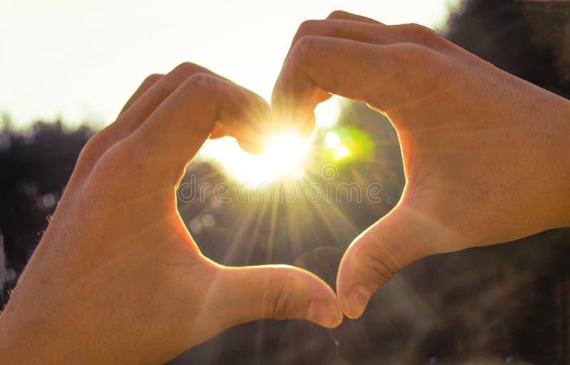 Mão no coração da luz do sol do amor fotografia de stock