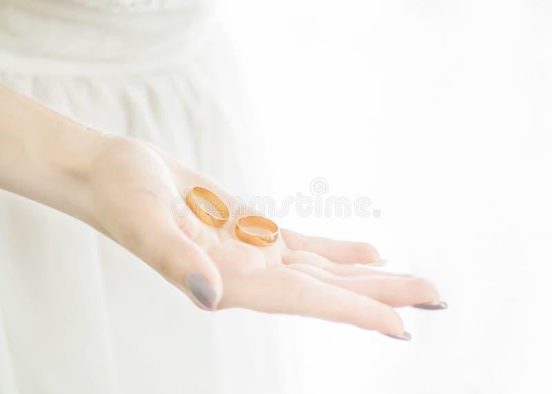 Mão nova do ` s da noiva do close-up que guarda duas alianças de casamento douradas na palma aberta Tradição e símbolo do casamen fotografia de stock