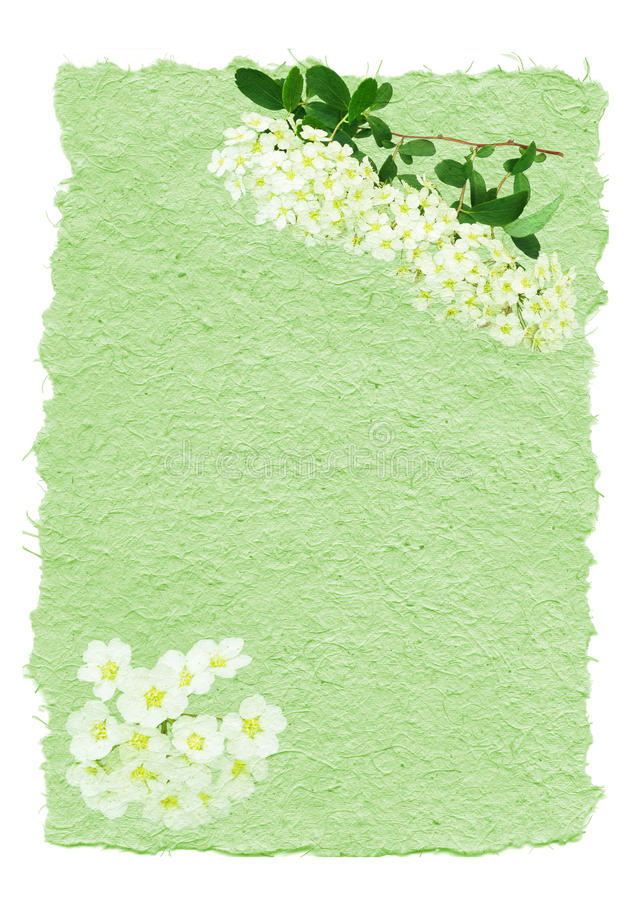 Mão - papel feito decorado ilustração royalty free