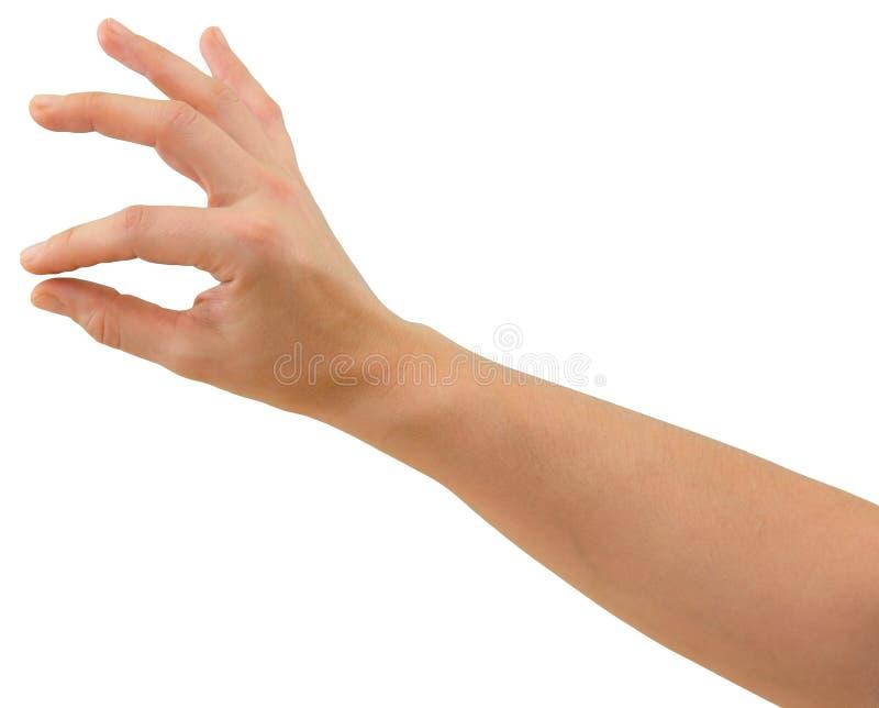 Mão para prender o objeto fino foto de stock royalty free