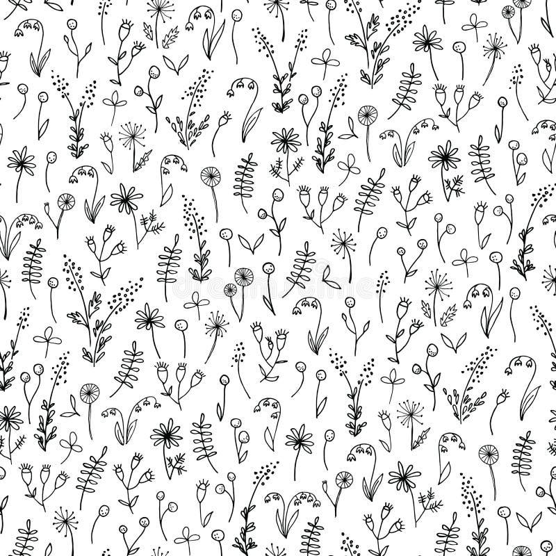 Mão preto e branco teste padrão sem emenda tirado do vetor floral da garatuja Flores bonitos do prado A lápis desenho ilustração do vetor
