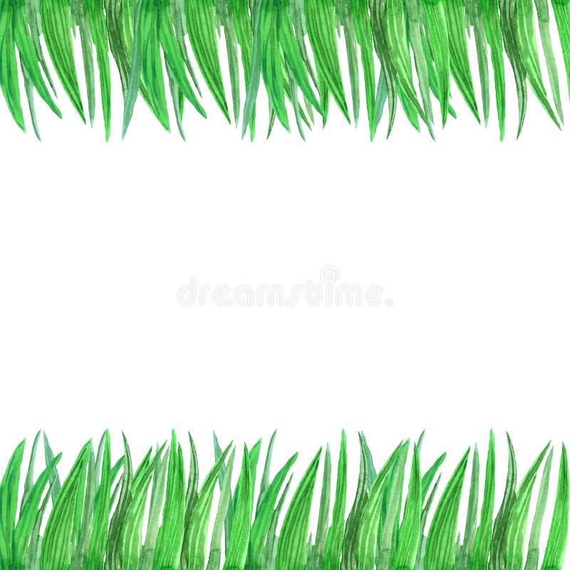 Mão que afoga o teste padrão da grama verde da aquarela ilustração royalty free