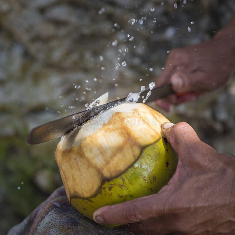 Mão que corta a parte superior do coco com o machete como Juice Sprays imagem de stock