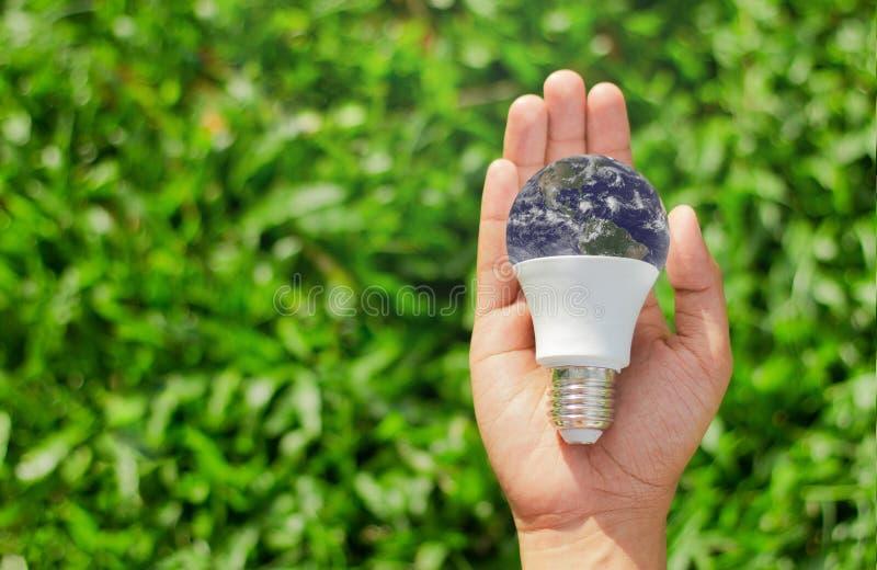 Mão que guarda a ampola no fundo natural verde, ener verde imagens de stock royalty free
