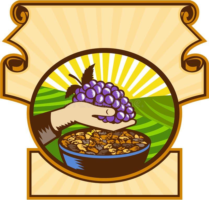 Mão que guarda o bloco xilográfico da crista das passas das uvas ilustração royalty free