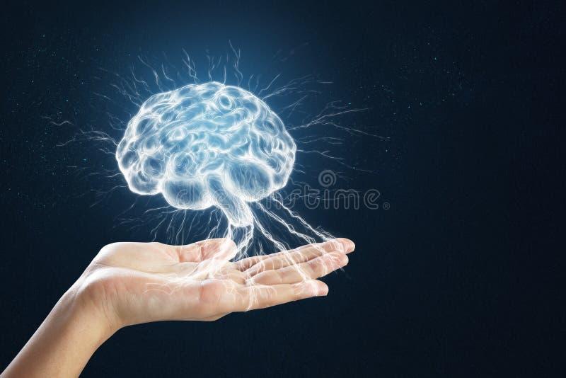 Mão que guarda o cérebro digital foto de stock royalty free