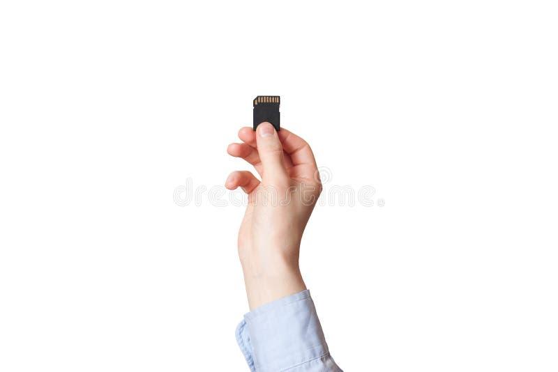 Mão que guarda o cartão de memória do SD no fundo branco fotos de stock