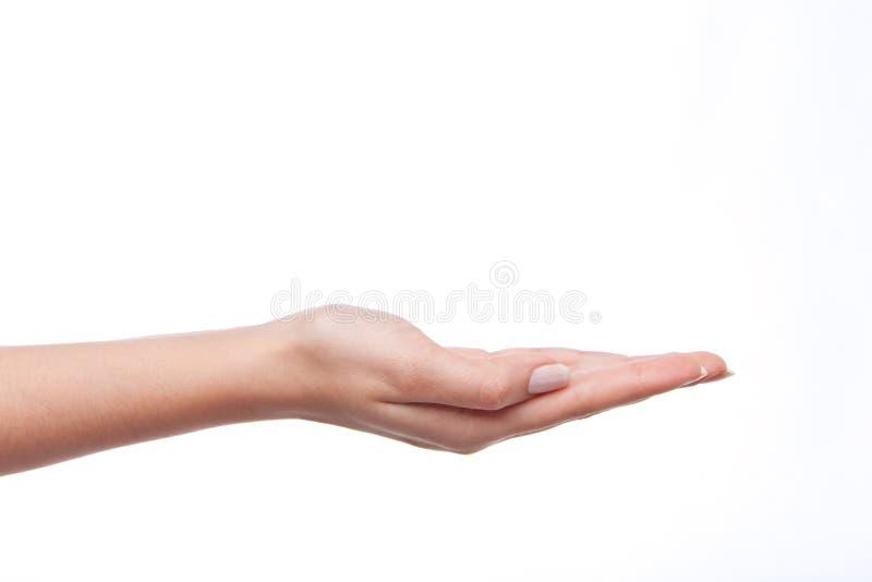 Mão que guarda sobre o branco fotos de stock royalty free