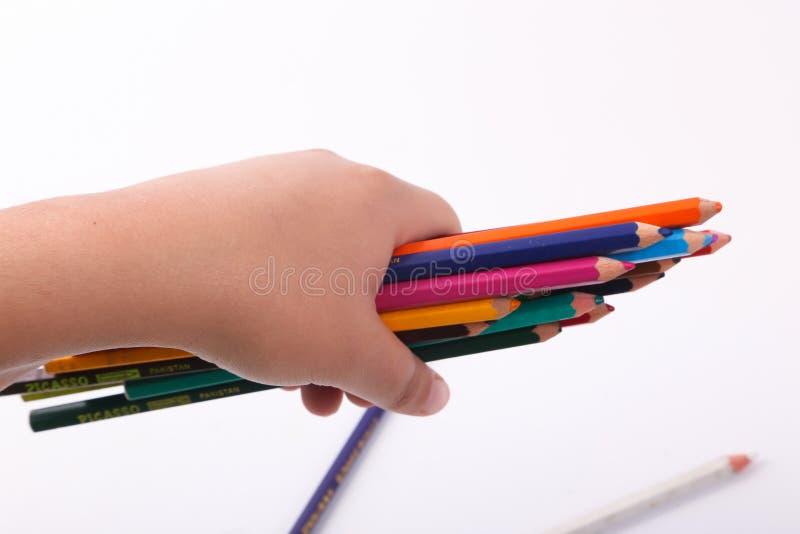 Mão que guarda a variedade das cores de madeira fotografia de stock