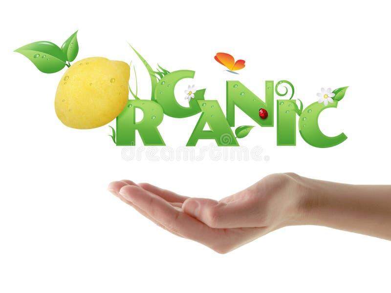Mão que guardara o projeto ecológico orgânico da palavra ilustração do vetor