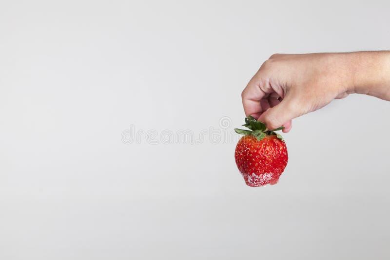 Download Mão Que Guardara Uma Morango Imagem de Stock - Imagem de mão, pesos: 29826465