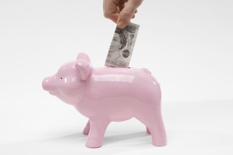 Mão que introduz a moeda da libra em Piggybank fotos de stock