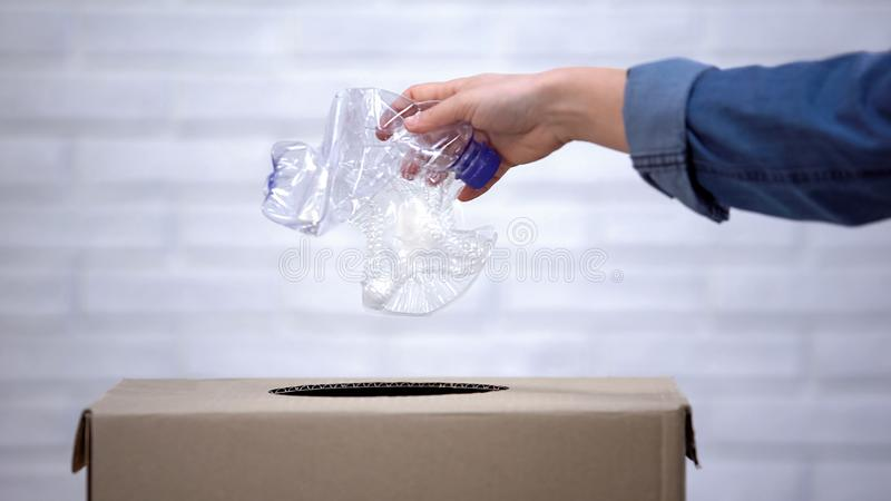 Mão que joga garrafas plásticas no escaninho de lixo, classificando o desperdício não-degradable fotos de stock royalty free