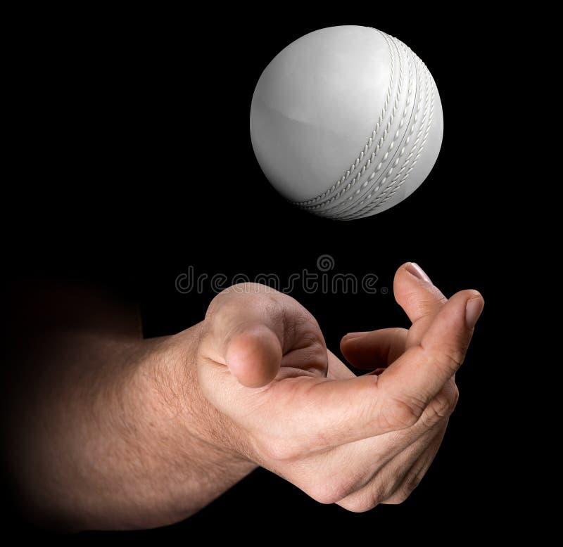 Mão que lanç a bola de grilo ilustração stock