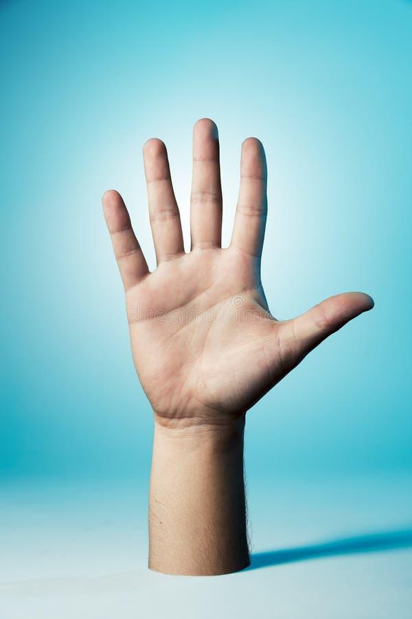 Mão que mostra todos os cinco dedos fotografia de stock