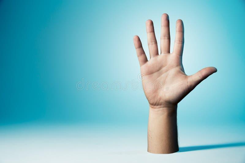 Mão que mostra todos os cinco dedos imagem de stock