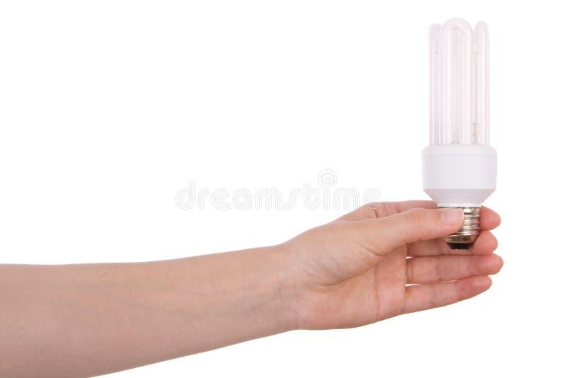 Mão que prende a ampola fluorescente compacta fotos de stock