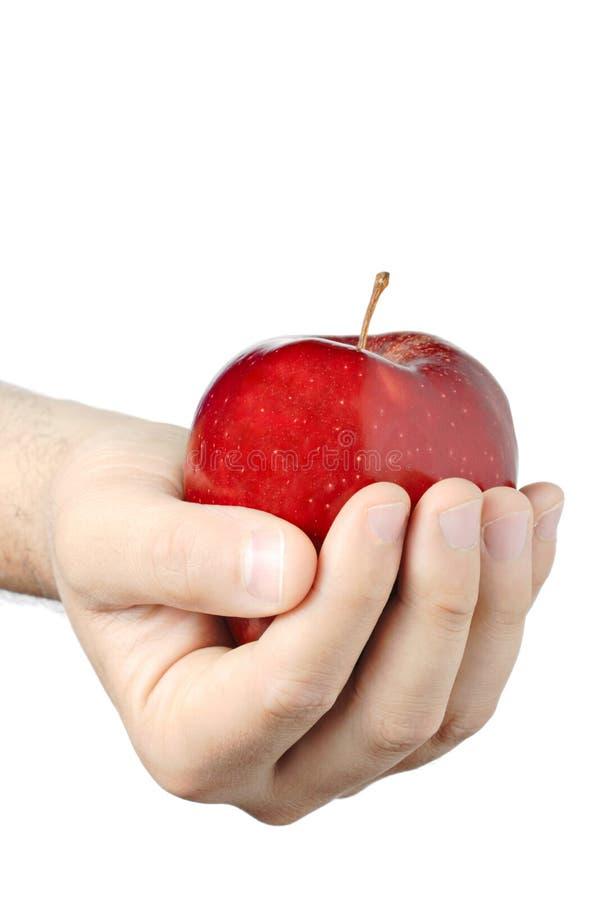 Mão que prende uma maçã imagem de stock royalty free