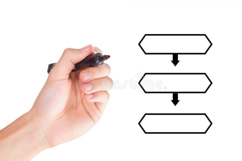 Mão que tira o fluxograma hierárquico com marcador imagens de stock