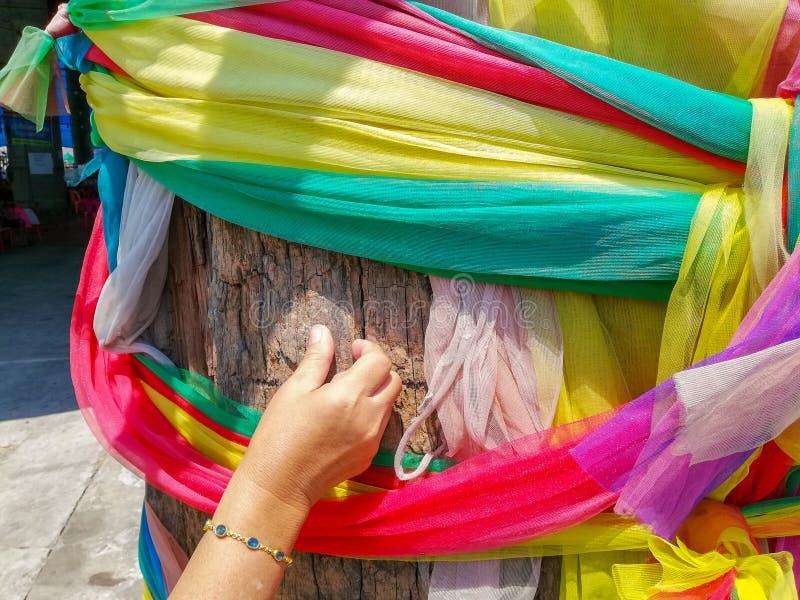 a mão scracthing na árvore para encontrar o número afortunado para a loteria em Tailândia foto de stock royalty free