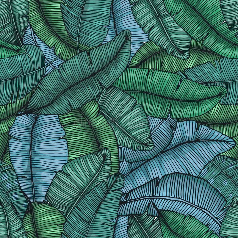 Mão sem emenda o teste padrão tirado com banana sae textura tropical da ilustração botânica do vetor ilustração royalty free