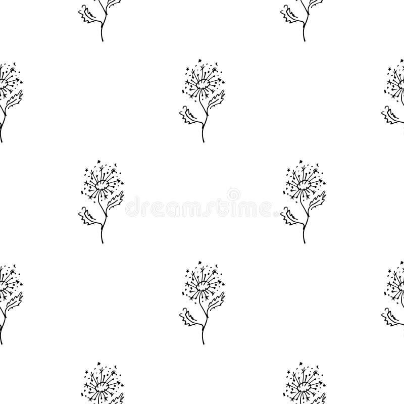 Mão sem emenda teste padrão tirado das flores abstratas do dente-de-leão isoladas no fundo branco Vector a ilustra??o floral Dood ilustração royalty free