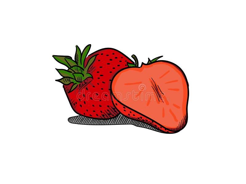 Mão simples da ilustração da morango tirada ilustração do vetor