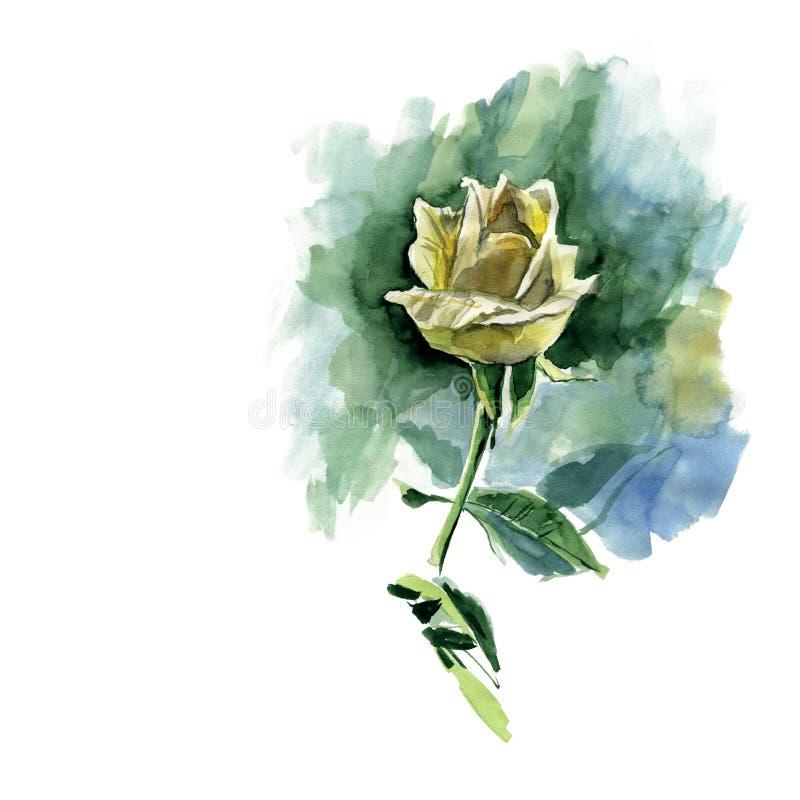 Mão tirada uma rosa amarela watercolor ilustração stock