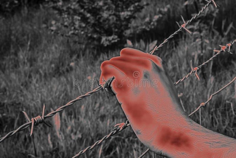 Mão torturada ensanguentado que agarra desesperadamente o arame farpado fotos de stock