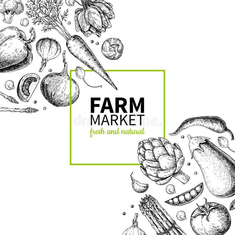 Mão vegetal ilustração tirada do quadro do vetor do vintage Cartaz do mercado da exploração agrícola Grupo do vegetariano de prod ilustração do vetor