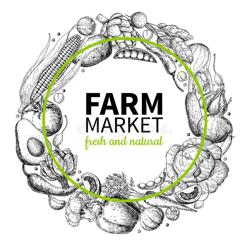 Mão vegetal ilustração tirada do vetor da grinalda do vintage Cartaz do mercado da exploração agrícola Grupo do vegetariano de pr ilustração stock