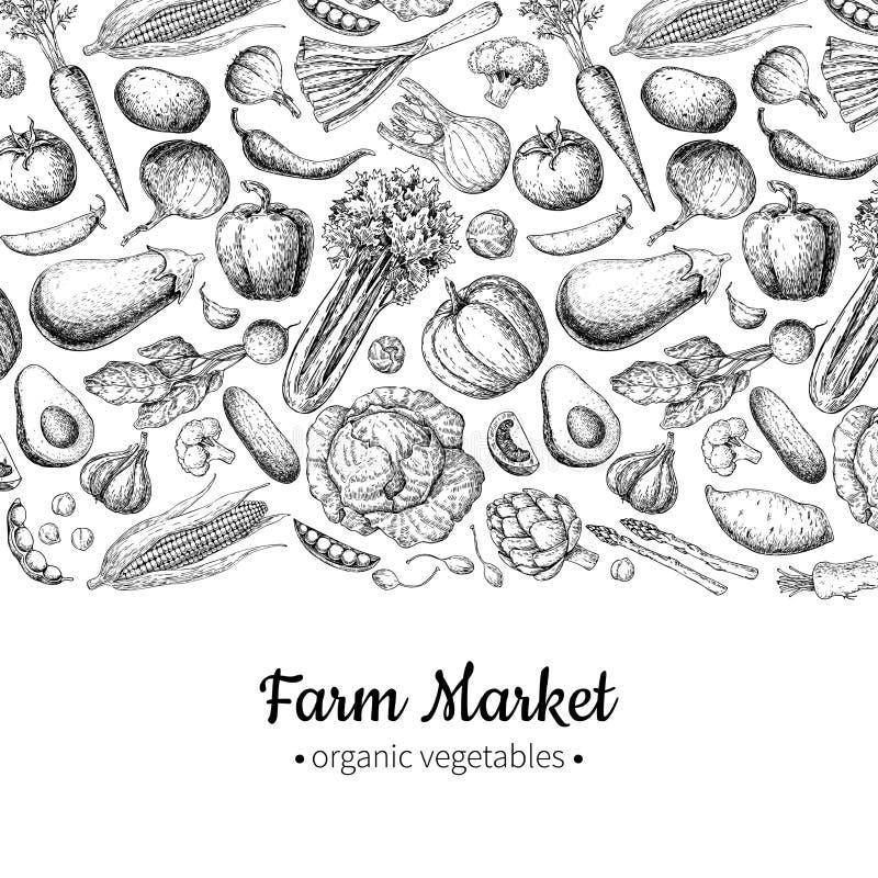 Mão vegetal ilustração tirada do vetor do vintage Cartaz do mercado da exploração agrícola Grupo do vegetariano de produtos orgân ilustração royalty free