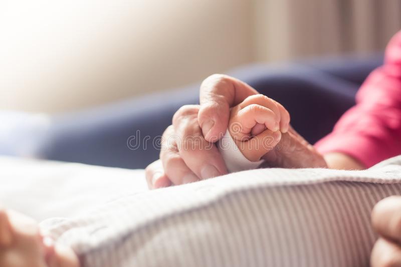 Mão velha do ` s da avó que guarda a mão recém-nascida do ` s fotografia de stock