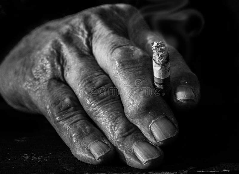 Mão velha que prende uma vara fotografia de stock royalty free
