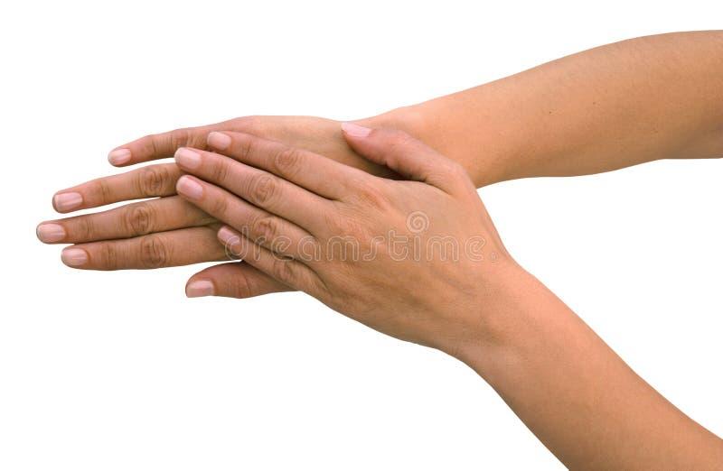 Mãos Foto De Stock Grátis