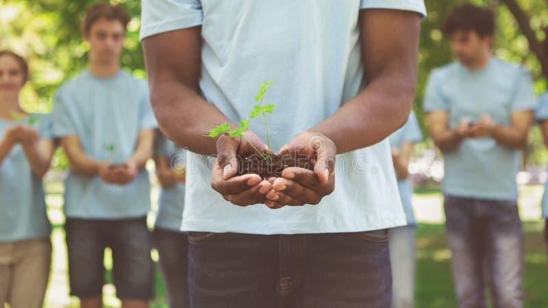 Mãos afro-americanos do homem que guardam a planta no solo fotografia de stock royalty free