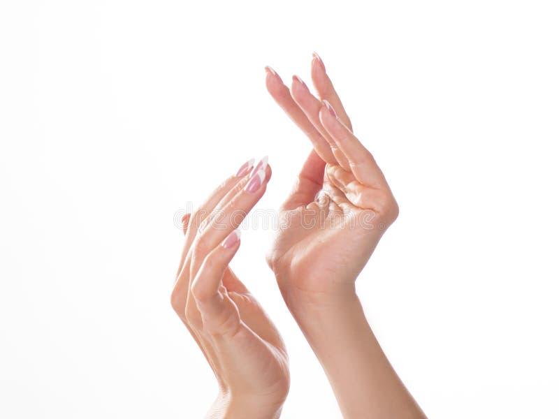 Mãos bonitas da jovem mulher com o creme, isolado no branco foto de stock royalty free