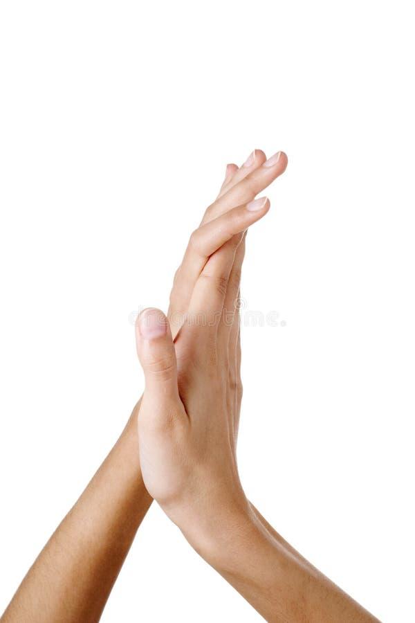 Mãos bonitas dos womans foto de stock royalty free