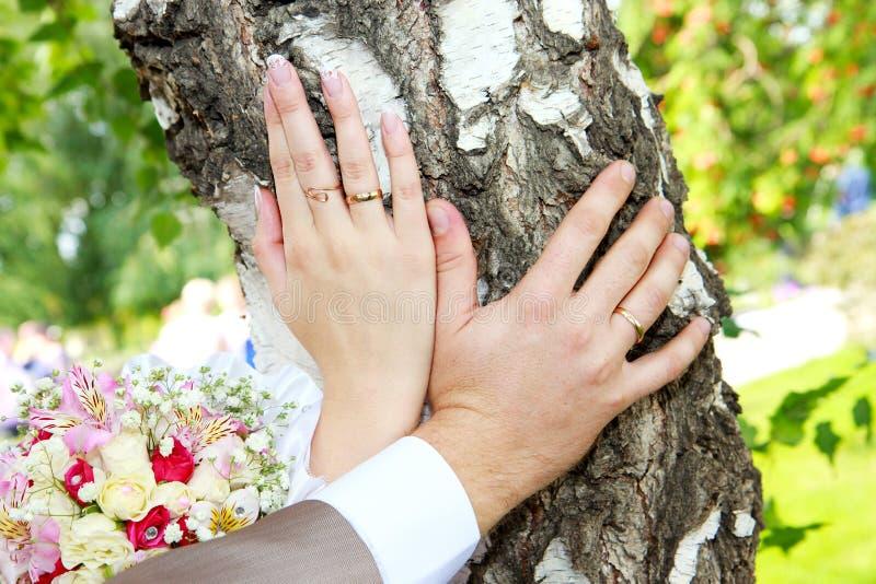 Mãos com alianças de casamento imagens de stock
