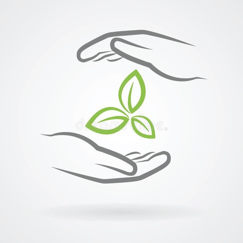 Mãos com folhas verdes ilustração do vetor