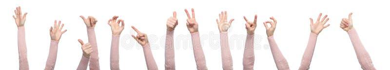 Mãos com gestos isoladas em um fundo branco imagem de stock royalty free