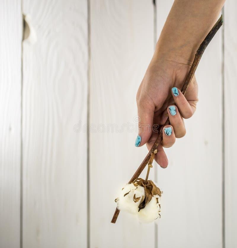 Mãos com os pregos bonitos no fundo de madeira branco imagens de stock