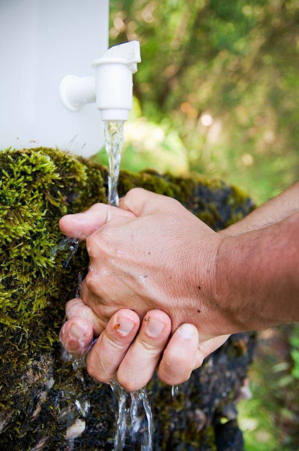 Mãos da limpeza na natureza foto de stock royalty free