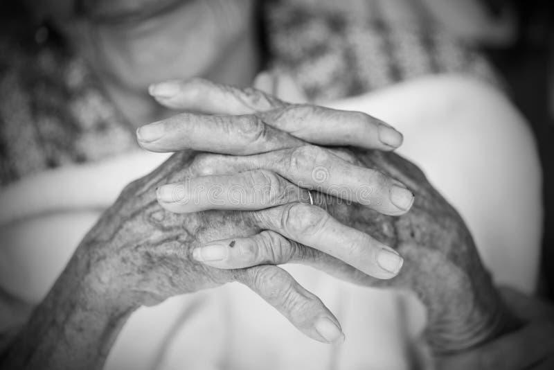 Mãos da mulher adulta Rebecca 36 imagem de stock