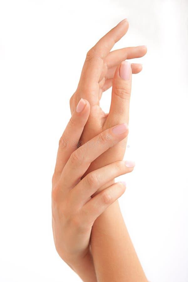 Mãos da mulher bonita foto de stock