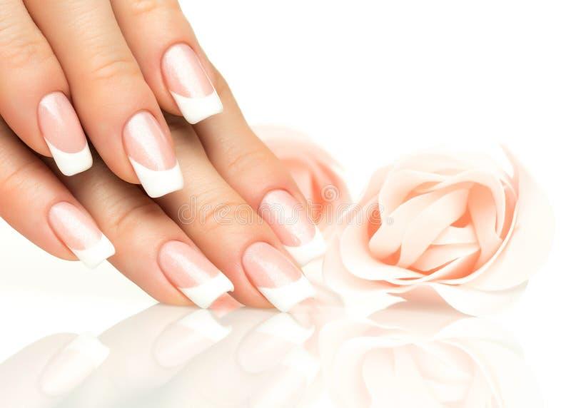 Mãos da mulher com close-up do tratamento de mãos francês foto de stock