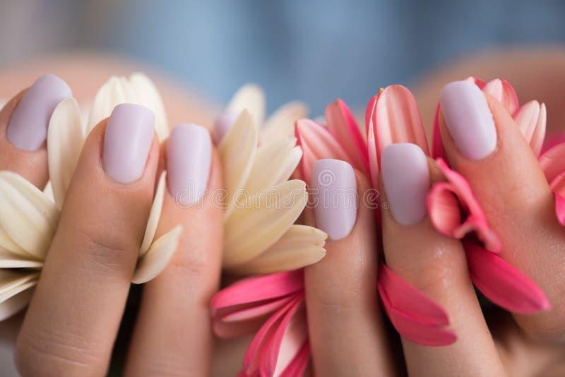 Mãos da mulher com o tratamento de mãos que guarda a flor imagens de stock royalty free