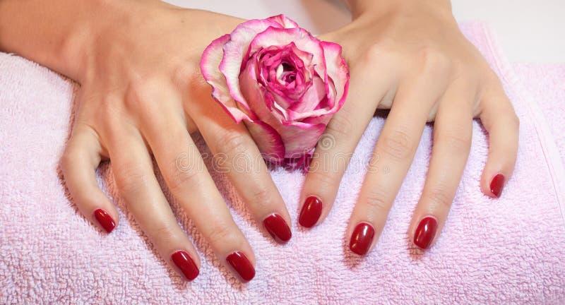 Mãos da mulher com tratamento de mãos vermelho imagem de stock royalty free