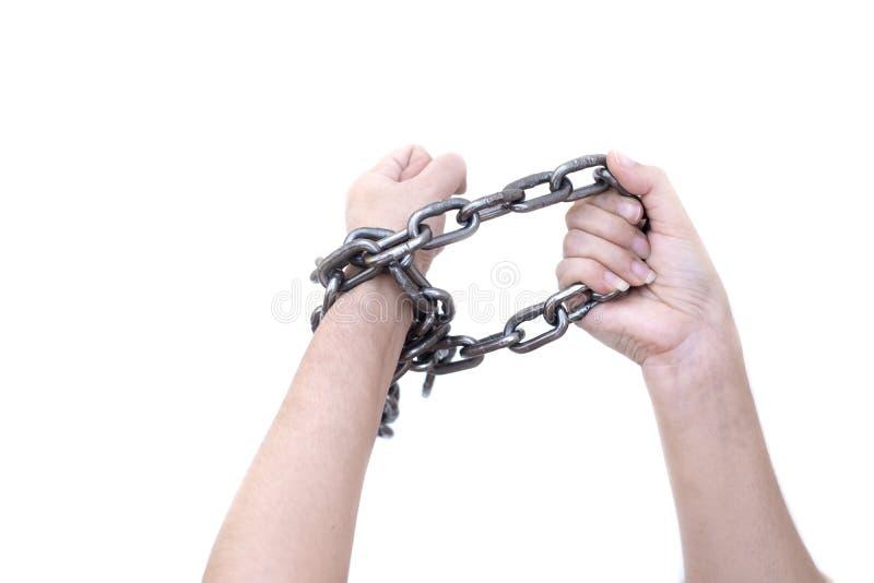 Mãos da mulher do escravo amarradas acima com a corrente de aço no fundo branco, violações de direitos humanos, o dia das mulhere imagem de stock